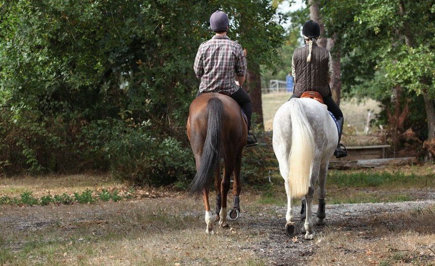 equitacion-paseos-rutas-caballos-2-e1417712661189