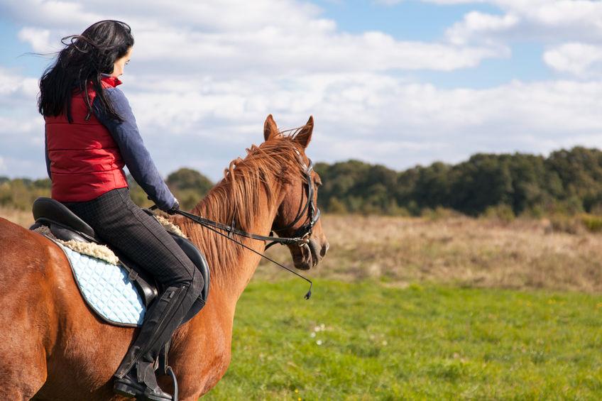 paseos-caballo-despedidas-2