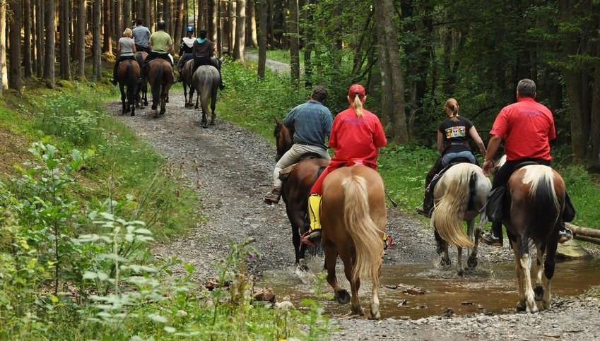 paseos-caballo-despedidas-3-e1417712693796