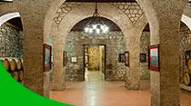 Bodega, actividades para visitar el vino de Logroño