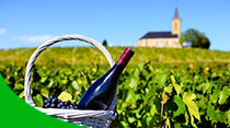 visita enoturistica en La Rioja